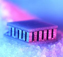 micro-mainpage